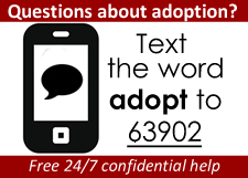 Text about adoption